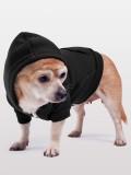 Sweat chien noir 2